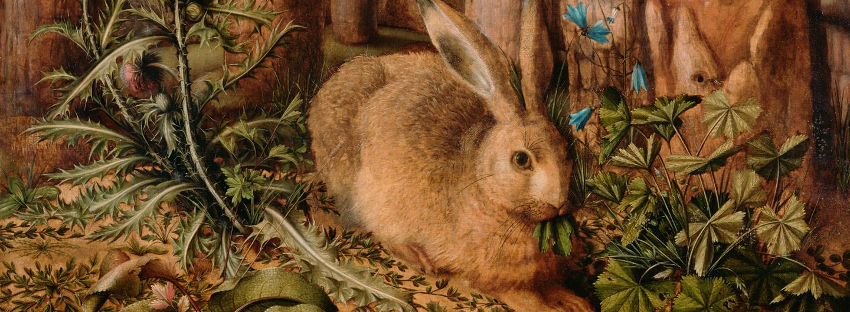 Hans Hoffmann | Ein Hase im Wald